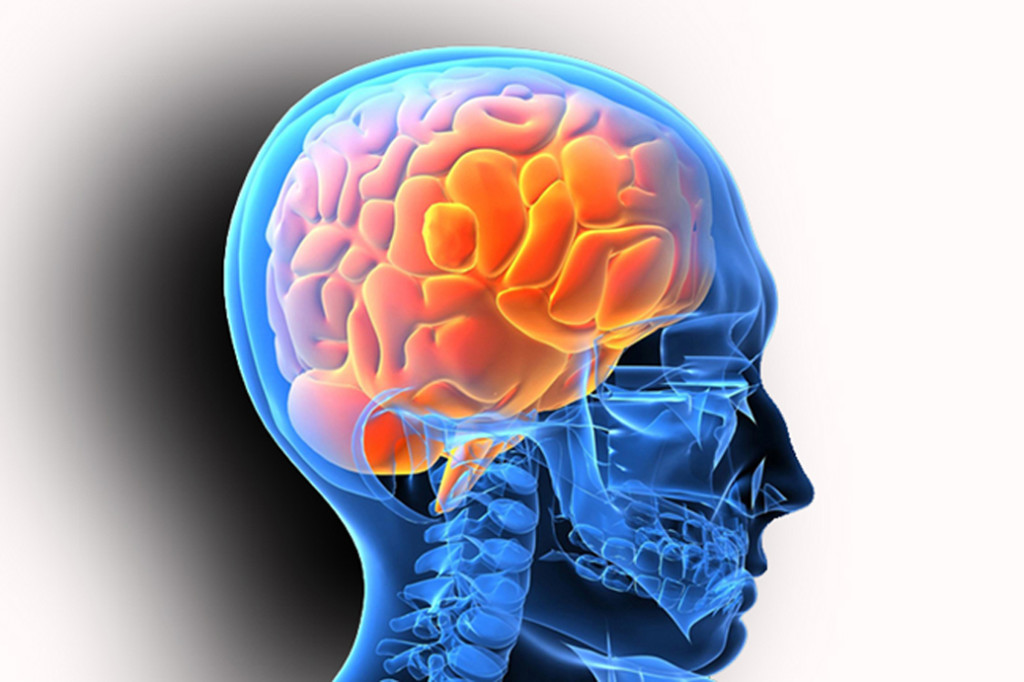 Upper-Cervical-Neurology-Brain-Stem